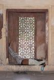 L'uomo dorme su una finestra della grata immagini stock