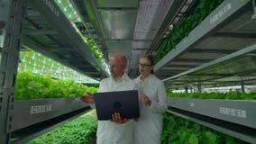 L'uomo e una donna con un computer portatile in camice, scienziati scendono l'azienda agricola verticale del corridoio video d archivio