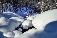 L'uomo fra i cumuli di neve nel legno siberiano Immagini Stock Libere da Diritti