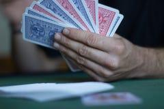L'uomo gioca le carte Immagine Stock