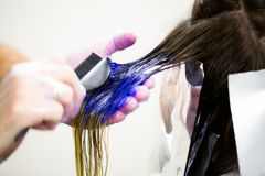 L'uomo in guanti è colorfull blu lungo di morte dei capelli Salone di bellezza, barbiere fotografia stock libera da diritti