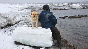 L'uomo ha girato il suo posteriore esaminando il mare nella distanza accanto lui cane video d archivio