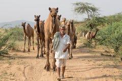 L'uomo indiano ha assistito al cammello annuale Mela di Pushkar fotografie stock