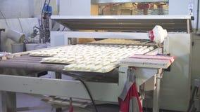 L'uomo lavora la macchina di modellatura della pittura di legno archivi video