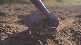 L'uomo manualy coltiva la terra con una fine del giorno soleggiato della zappa su stock footage