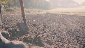L'uomo manualy coltiva la terra con una fine del giorno soleggiato della zappa su archivi video