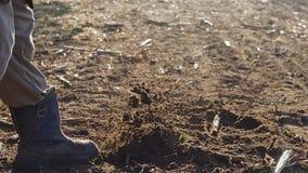 L'uomo manualy coltiva la terra con una fine della zappa su archivi video
