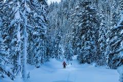 L'uomo nel legno della neve Immagini Stock