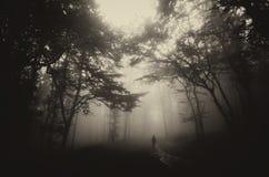 L'uomo nello scuro ha frequentato la foresta misteriosa con nebbia su Halloween immagini stock libere da diritti