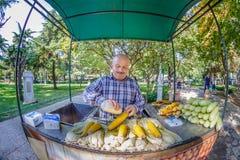 L'uomo non identificato vende il cereale fresco bollito a Costantinopoli fotografia stock