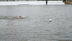 L'uomo nuota in acqua di fiume fredda nell'inverno walrus stock footage