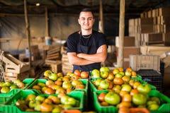 L'uomo organico felice dell'agricoltore con attraversato consegna i contenitori di pomodori Fotografia Stock Libera da Diritti