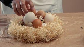 L'uomo porta via un uovo dal nido in azienda agricola stock footage