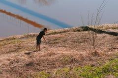 L'uomo prende i serpenti nell'erba asciutta sulla riva Fotografia Stock