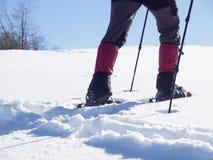 L'uomo in racchette da neve Fotografia Stock