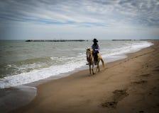 L'uomo sbarazza il cavallo alla parte anteriore di oceano immagini stock libere da diritti