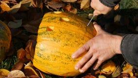 L'uomo scolpisce il fronte per una zucca di Halloween Preparando per la festa di autunno video d archivio
