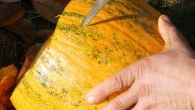 L'uomo scolpisce il fronte per una zucca di Halloween Preparando per la festa di autunno stock footage