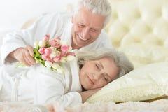 L'uomo senior dà i fiori ad una donna Immagini Stock Libere da Diritti
