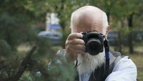 L'uomo senior prende una foto dell'abete rosso video d archivio