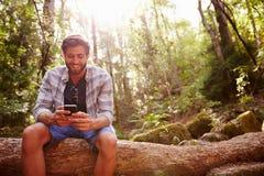 L'uomo si siede sul tronco di albero in Forest Using Mobile Phone Immagine Stock