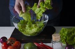 L'uomo sta preparando l'insalata verde di lattuga romana Concetto sano dell'alimento fotografie stock libere da diritti