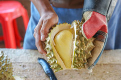 L'uomo sta sbucciando il coltello di uso delle coperture del durian, il durian è un re di frutta Fotografie Stock