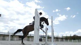 L'uomo sul cavallo sta saltando sopra la barriera archivi video