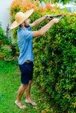L'uomo taglia i cespugli Fotografia Stock