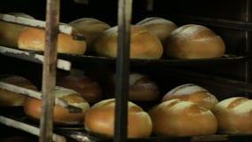 L'uomo tira il pane fresco dal forno archivi video