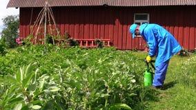 L'uomo in vestiti blu mescola il fertilizzante in spruzzatore al giacimento della patata Immagini Stock