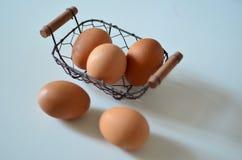 L'uovo Fotografia Stock Libera da Diritti