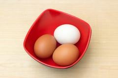 L'uovo del pollo e l'uovo dell'anatra in ciotola rossa su compensato si imbarcano sul fondo Fotografia Stock