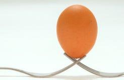 L'uovo dell'equilibrio fotografia stock