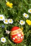 L'uovo di Pasqua rosso che si trova nello springflower ha coperto il prato Fotografie Stock Libere da Diritti