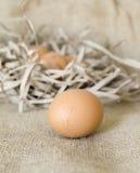 L'uovo sulle fiamme carta e sacco Fotografia Stock Libera da Diritti