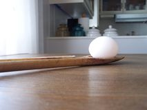 L'uovo vigoroso Fotografia Stock Libera da Diritti