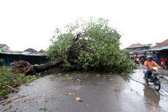 L'uragano fotografia stock