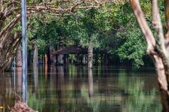 L'uragano Firenze porta le acque di inondazione fotografia stock