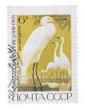 L'URSS - CIRCA 1968: Un bollo ha stampato nell'immagine di manifestazioni di Grea Immagine Stock