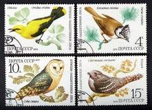 L'URSS - VERS 1979 : une série de timbres imprimés en URSS, oiseaux d'expositions, VERS 1979 Image stock