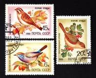 L'URSS - VERS 1981 : une série de timbres imprimés en URSS, oiseaux de chanson d'expositions, VERS 1981 Photos stock