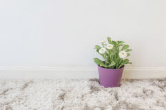 L'usine artificielle de plan rapproché avec la fleur blanche dans le pot pourpre sur le mur de tapis gris brouillé et de ciment b Images stock