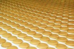 L'usine de production de biscuit et de gaufre rayent, bande de conveyeur photos libres de droits