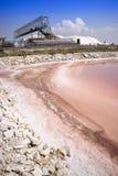 L'usine de sel Image stock