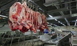 L'usine pour la production de la nourriture des ingrédients naturels Boucher Shop Boeuf de abattage Images libres de droits