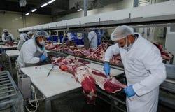 L'usine pour la production de la nourriture des ingrédients naturels Boucher Shop Boeuf de abattage Image libre de droits