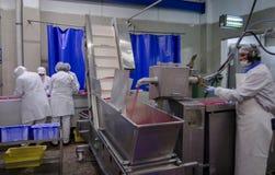 L'usine pour la production de la nourriture des ingrédients naturels Boucher Shop Boeuf de abattage Images stock