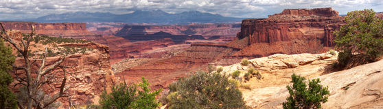 L'Utah Canyonlands Fotografia Stock