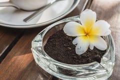 L'utilisation des résidus des grains de café écrasés réduit le réchauffement global par simple signifie image libre de droits